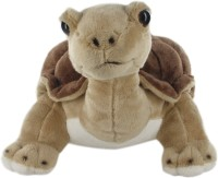 Hamleys Land Turtle Soft Toy  - 9.8 Inch (Multicolor)