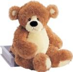 "GUND Soft Toys GUND Bear ""Fleming"""
