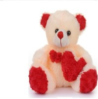 Ktkashish Toys Kashish Sweet Side Heart Teddy Bear 16 Inch  - 16 Inch (Beige)