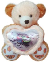 MFT Teddy Wishes Someone Special D  - 20 Inch (Multicolor)