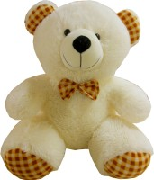 Play Toons Teddy Bear  - 22 Inch (Multicolor)