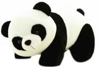 Tanisi Panda Soft Toys  - 40 Cm (White, Black)