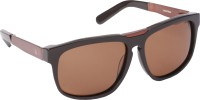 Louis Victor Brown Wayfarer Sunglasses