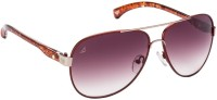 Vincent Chase Aviator Sunglasses - SGLEF7APUHRUCBWW