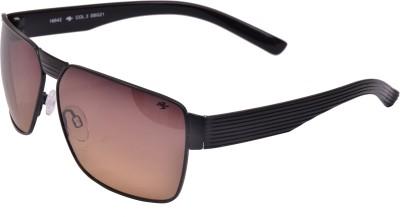 sunglasses online shopping offers y4fo  Romeo Safari Aviator Sunglasses