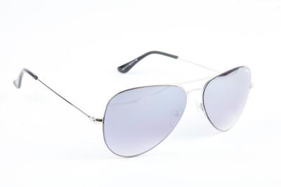 Image Image Wayfarer Sunglasses (Silver)