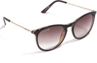 Danny Daze D-400-C8 Oval Sunglasses Brown