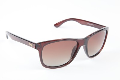 Image Image Wayfarer Sunglasses (Brown)