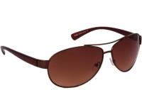 Fueel Oval Sunglasses