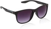 Glitters Latest Black::Grey Wayfarer Sunglasses