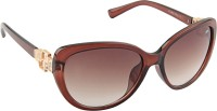 Farenheit Oval Sunglasses Brown - SGLEG4UWZ7Z3ZRMJ