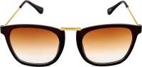6by6 Golden & Brown Unisex Wayfarer Sunglasses Brown