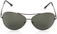 Reebok B2015a Aviator Sunglasses