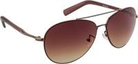 Funky Boys Aviator Sunglasses Brown