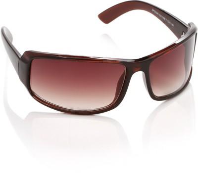 Speedo Speedo Rectangular Sunglasses (Brown)