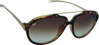 Ainak Zoya Aviator Sunglasses
