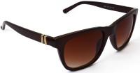 Puma RL Classic Bar Brown Wayfarer Sunglasses