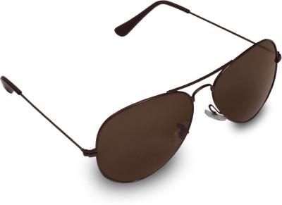 Aviator Ferrero Aviator Sunglasses (Brown)