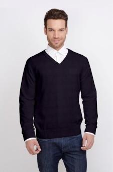 ALX New York Solid V-neck Casual Men's Sweater