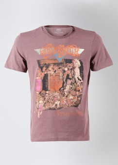 Compare Aerosmith Round Neck Printed Men T-shirt: T-Shirt at Compare Hatke