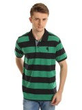 Arrow Striped Men's Polo T-Shirt