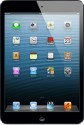Apple 16GB iPad Mini with Wi-Fi and Cellular