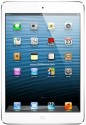 Apple 16GB iPad Mini with Wi-Fi and Cellular: Tablet