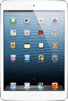 Apple 16GB iPad Mini with Wi-Fi