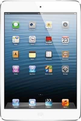 Apple 16GB iPad Mini with Wi-Fi