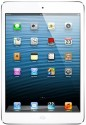 Apple 16GB IPad Mini With Wi-Fi And Cellular - White And Silver