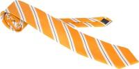 Roar and Growl Striped Men's Tie