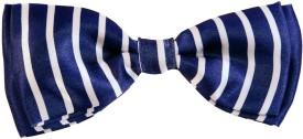 Blacksmith Corporate Stripesdesign Bow Striped Men's Tie