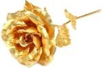 RajHeera Golden Rose Valentine Gift Gift Set