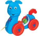 Toyzee Push & Pull Along Toyzee Rabit Toy