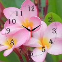Go Hooked Flower Print Analog Wall Clock Multicolor