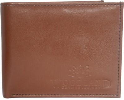 Aam Shopping Men Brown Artificial Leather Wallet