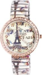 Zoya Wrist Watches ZV2 908 SSWBNE 17