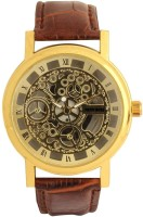 Pappi Boss Classic Skeleton Transparent Gold Dial Analog Watch  - For Men