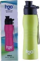 H2O STAINLESS STEEL WATER BOTTLE 600 Ml Water Bottle (Set Of 1, GREEN)