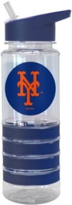 Boelter Brands 739 Ml Water Purifier Bottle (Blue)