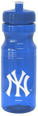 Boelter Brands 710 Ml Water Purifier Bottle (Blue)