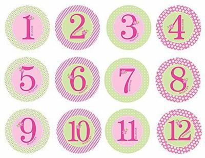 Pearhead Baby Milestone, Pink Yoyo Friction Sticker